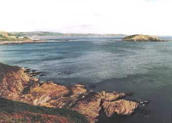 Looe Island. Photo:  R.J.Tarr 1999